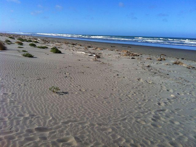 South Beach, Christchurch