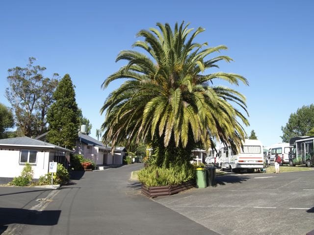 Auckland Kiwi Holiday Park