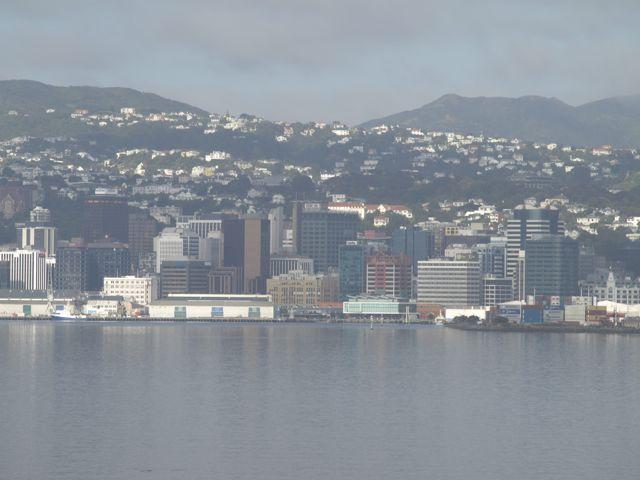 Wellington entschwindet im Dunst