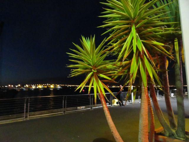 Am Hafen von Auckland