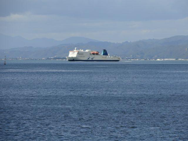 Wellington, am Hafen DSC06718