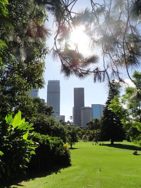 Sydney ist Skyline und Natur. DSC06778