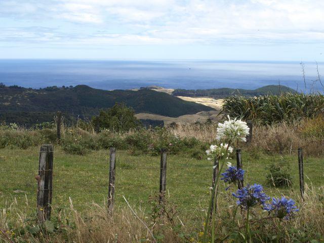 Ausblick Neuseeland Nordinsel Nähe Faraglione