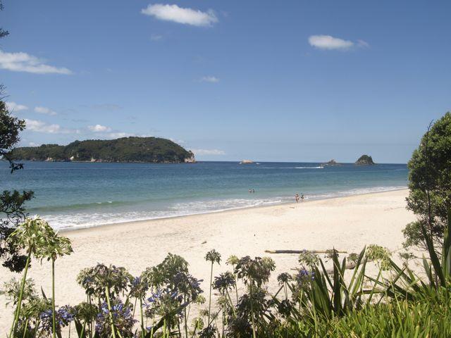 Hahei Beach noch einmal