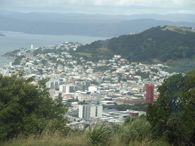 Wellington von oben